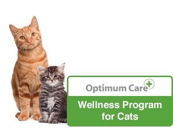 optimum care wellness program for cats