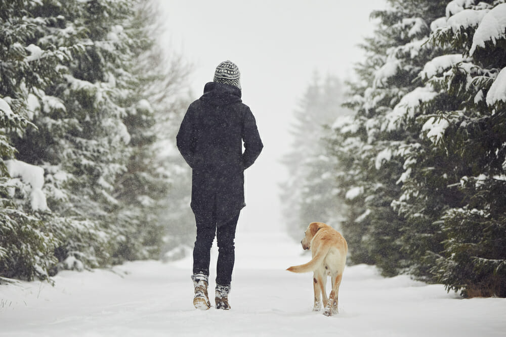 Dog owner and dog walking in the snow